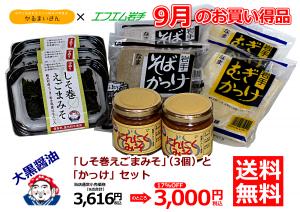 9gatsu_A4_2